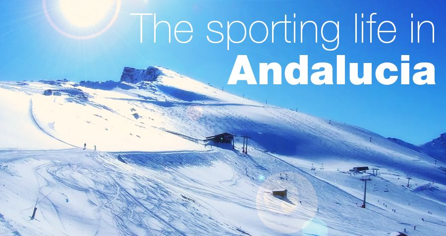 The sporting life in Andalucia