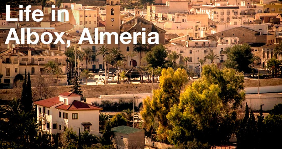 Life in Albox, Almeria